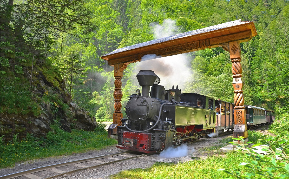 Best of Romania - a unique experience! Mocanita Steam Train Included!